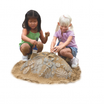 Fossiles enfouis
