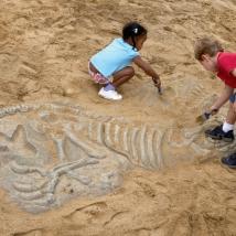 Fossiles de dinosaure